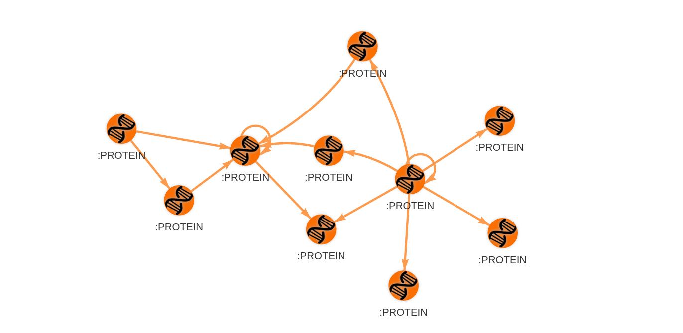 protein-network-1